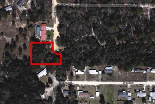 SE 102 Terrace, Belleview, FL 34420 (MLS #O5820485) :: 54 Realty