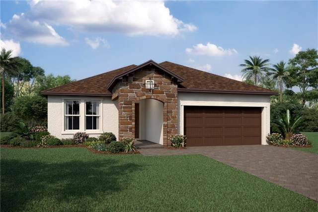 12117 Ryegrass Trail, Orlando, FL 32824 (MLS #O5820509) :: The Duncan Duo Team