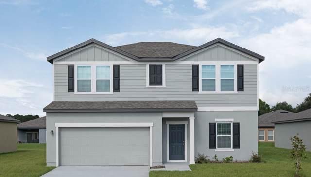 15708 Pine Siskin Loop, Mascotte, FL 34753 (MLS #O5820862) :: Premier Home Experts