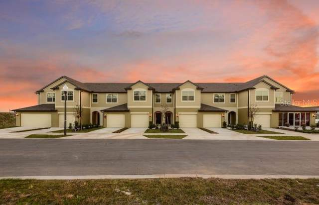 1236 Pavia Drive, Apopka, FL 32703 (MLS #O5820874) :: Team Bohannon Keller Williams, Tampa Properties