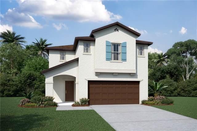 2811 Alpine Meadow Lane, Kissimmee, FL 34744 (MLS #O5820907) :: Team Bohannon Keller Williams, Tampa Properties