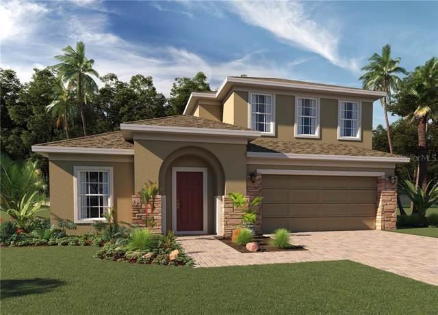 23743 Companero Drive, Sorrento, FL 32776 (MLS #O5820929) :: Team Bohannon Keller Williams, Tampa Properties