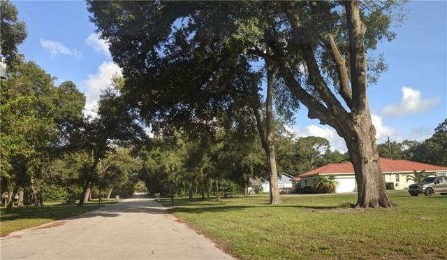 1614 Jeanette Street, Apopka, FL 32712 (MLS #O5821009) :: Rabell Realty Group