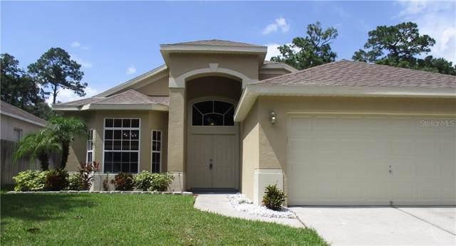 2319 Cimmaron Ash Way, Apopka, FL 32703 (MLS #O5821258) :: Dalton Wade Real Estate Group