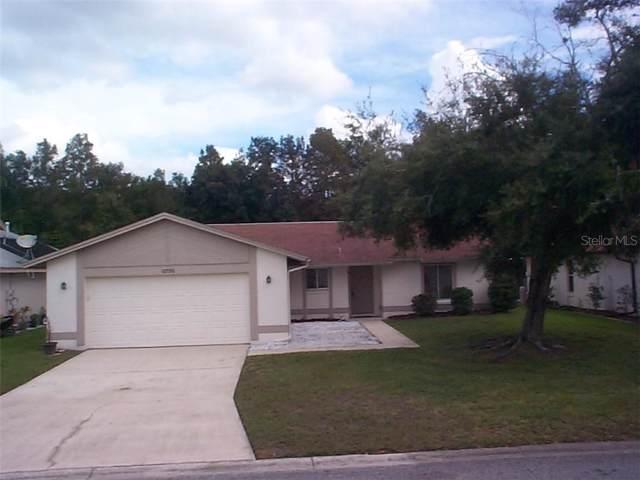 11725 Sandy Hill Drive, Orlando, FL 32821 (MLS #O5821981) :: Baird Realty Group