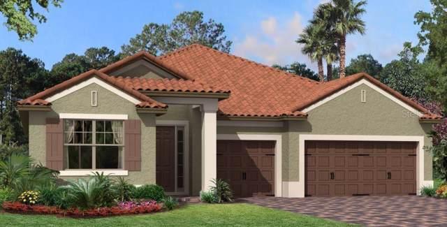 263 Lugano Way, Debary, FL 32713 (MLS #O5822185) :: Premier Home Experts