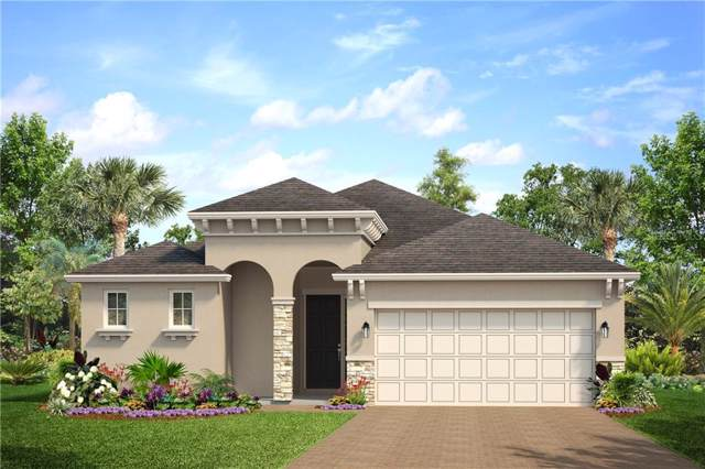 181 Trinity Ridge Circle, Davenport, FL 33897 (MLS #O5822409) :: Team Bohannon Keller Williams, Tampa Properties
