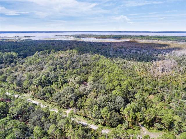 1400 Gopher Slough Road, Mims, FL 32754 (MLS #O5822411) :: 54 Realty