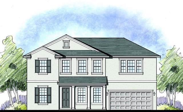 175 Brooks Field Drive, Winter Garden, FL 34787 (MLS #O5823291) :: Bustamante Real Estate