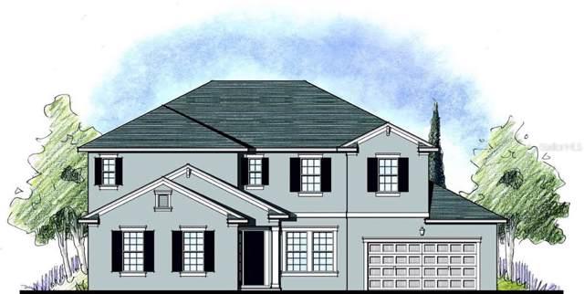 1685 Juniper Hammock Street, Winter Garden, FL 34787 (MLS #O5823682) :: Bustamante Real Estate