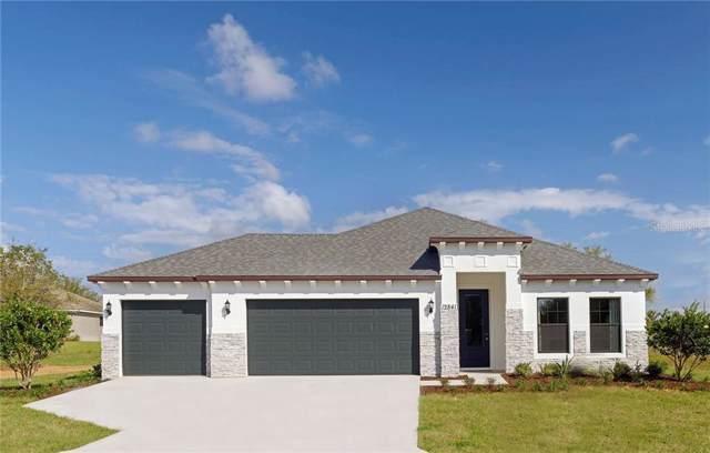 12834 Sugar Court, Grand Island, FL 32735 (MLS #O5823756) :: Your Florida House Team