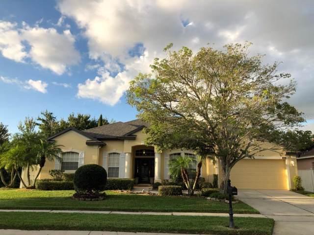 Address Not Published, Ocoee, FL 34761 (MLS #O5823799) :: Armel Real Estate
