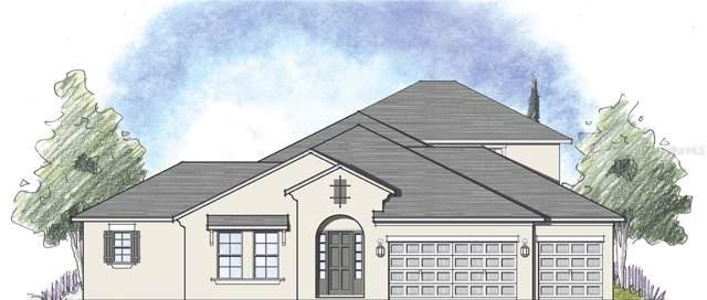1674 Juniper Hammock Street, Winter Garden, FL 34787 (MLS #O5823849) :: Bustamante Real Estate