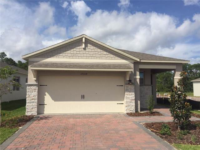 17334 Blazing Star Circle, Clermont, FL 34714 (MLS #O5823861) :: Your Florida House Team