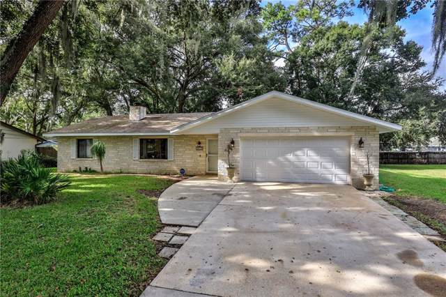 2910 Vista Palm Drive, Edgewater, FL 32141 (MLS #O5824529) :: The Brenda Wade Team