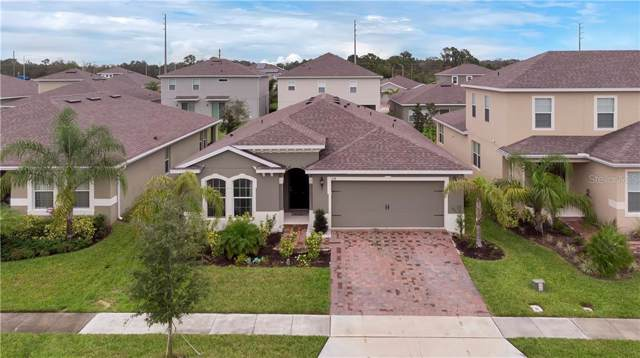 328 Summer Squall Road, Davenport, FL 33837 (MLS #O5824676) :: 54 Realty