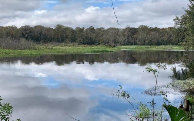Address Not Published, Lake Panasoffkee, FL 33538 (MLS #O5824803) :: The Light Team