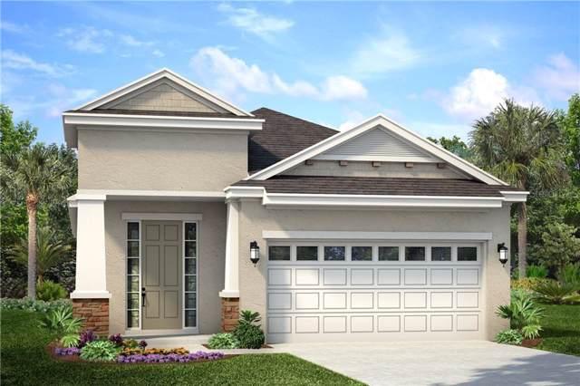 6228 Sea Amber Lane, Apollo Beach, FL 33572 (MLS #O5825119) :: Florida Real Estate Sellers at Keller Williams Realty