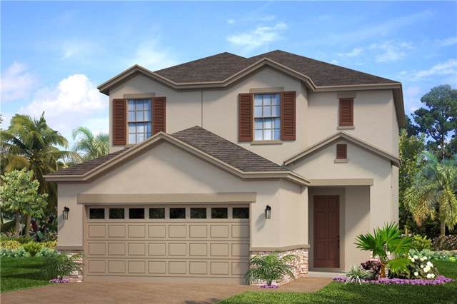6217 Voyagers Place, Apollo Beach, FL 33572 (MLS #O5825121) :: Florida Real Estate Sellers at Keller Williams Realty