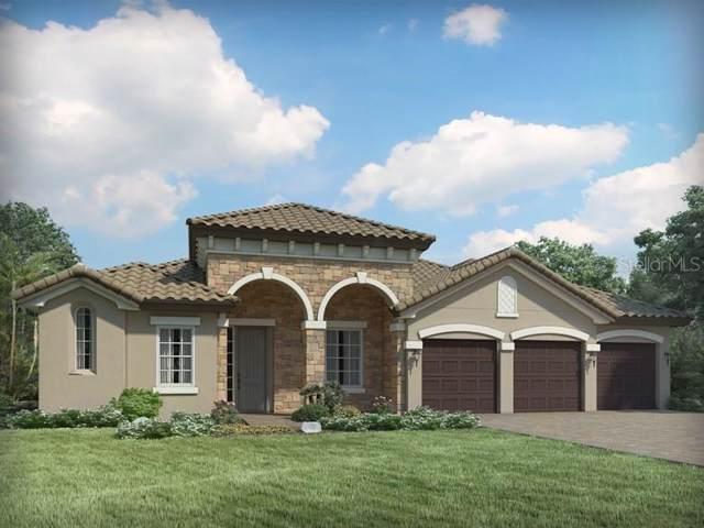 1445 Juniper Hammock Street, Winter Garden, FL 34787 (MLS #O5825144) :: Bustamante Real Estate
