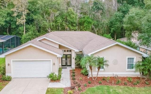 901 Centerwood Drive, Tarpon Springs, FL 34688 (MLS #O5825302) :: Team Borham at Keller Williams Realty
