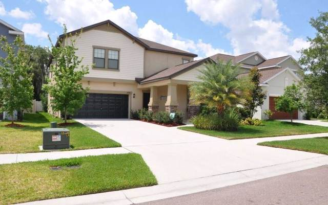 14278 Blue Dasher Drive, Riverview, FL 33569 (MLS #O5825435) :: Burwell Real Estate