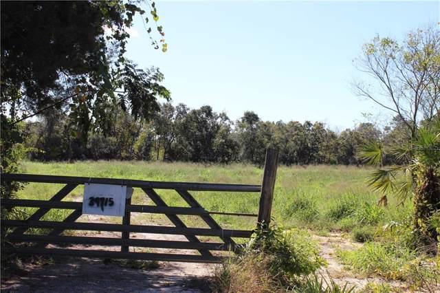 39715 E Cemetary Road, Umatilla, FL 32784 (MLS #O5825627) :: Kendrick Realty Inc