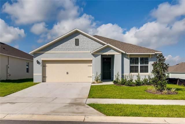 3603 Crimson Clover Drive, Mount Dora, FL 32757 (MLS #O5825725) :: Cartwright Realty