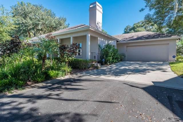 550 S Sandlake Court, Mount Dora, FL 32757 (MLS #O5825727) :: Cartwright Realty