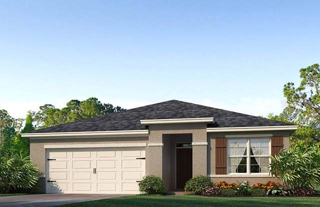 6554 Coral Berry Drive, Mount Dora, FL 32757 (MLS #O5825748) :: Cartwright Realty