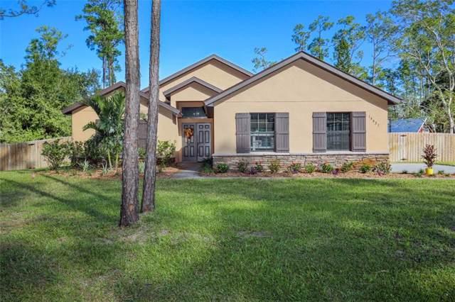 14631 Capri Road, Orlando, FL 32832 (MLS #O5825773) :: Team Bohannon Keller Williams, Tampa Properties