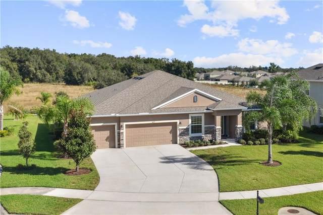 4633 Redfish Ct, Apopka, FL 32712 (MLS #O5825854) :: Bustamante Real Estate