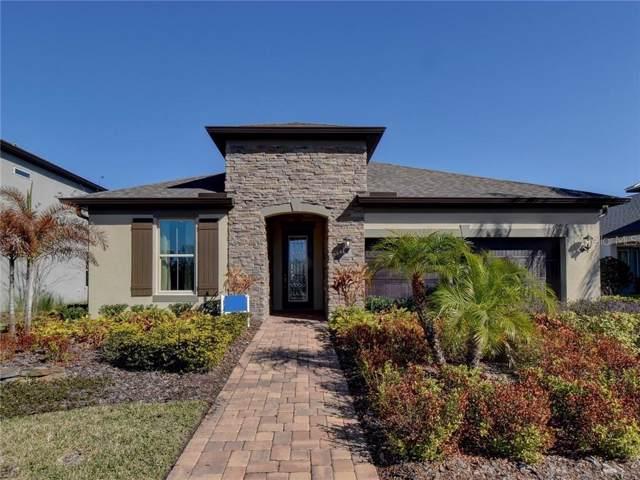 10408 Alcon Blue Drive, Riverview, FL 33578 (MLS #O5825966) :: Dalton Wade Real Estate Group