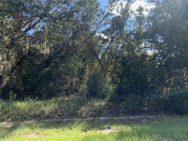 Amberjack Court, Poinciana, FL 34759 (MLS #O5826362) :: Cartwright Realty