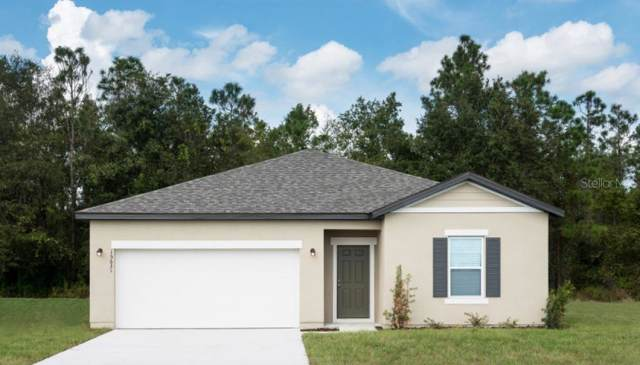 3017 Gibraltar, New Smyrna Beach, FL 32168 (MLS #O5826539) :: Florida Life Real Estate Group