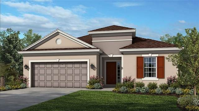 1009 Timberview Road, Clermont, FL 34715 (MLS #O5826572) :: Griffin Group