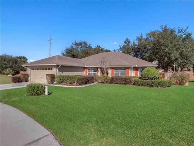 874 Haven Oak Court, Apopka, FL 32703 (MLS #O5826625) :: Bustamante Real Estate