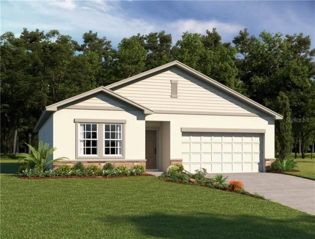 2929 Deerberry Lane, Clermont, FL 34714 (MLS #O5826761) :: Dalton Wade Real Estate Group