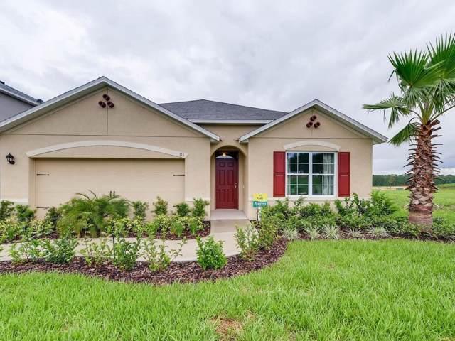 970 Shady Tree Lane, Davenport, FL 33897 (MLS #O5826821) :: Team Bohannon Keller Williams, Tampa Properties