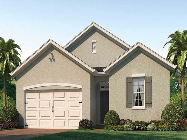 934 Shady Tree Lane, Davenport, FL 33897 (MLS #O5826829) :: Team Bohannon Keller Williams, Tampa Properties