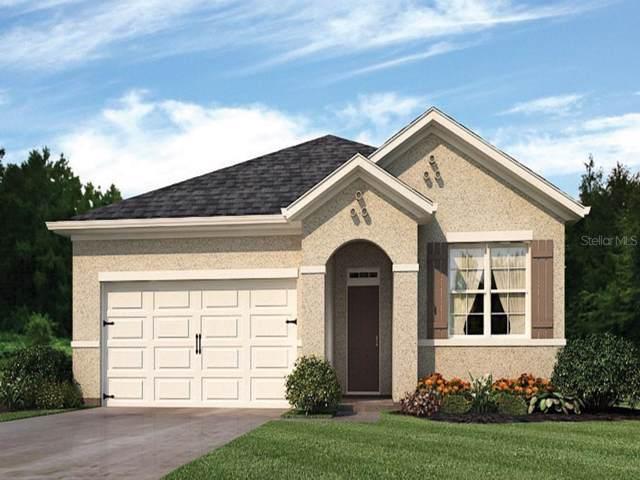 973 Shady Tree Lane, Davenport, FL 33897 (MLS #O5826835) :: Team Bohannon Keller Williams, Tampa Properties