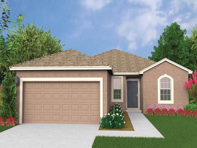 961 Shady Tree Lane, Davenport, FL 33897 (MLS #O5828217) :: The Duncan Duo Team