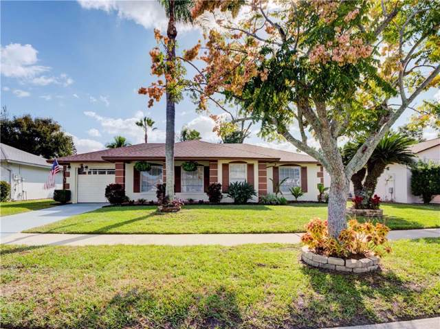 11357 Scenic View Ln, Orlando, FL 32821 (MLS #O5828283) :: Team Bohannon Keller Williams, Tampa Properties