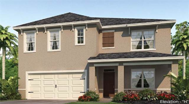 1519 White Hawk Way, Groveland, FL 34736 (MLS #O5828371) :: Team Bohannon Keller Williams, Tampa Properties