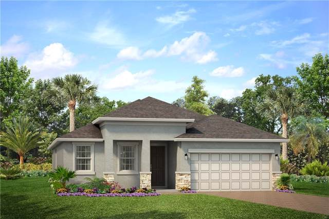 2280 Stone Tablet Street, Odessa, FL 33556 (MLS #O5828497) :: The Duncan Duo Team