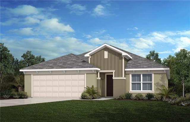 13773 Rushing Creek Run, Orlando, FL 32824 (MLS #O5828505) :: Cartwright Realty