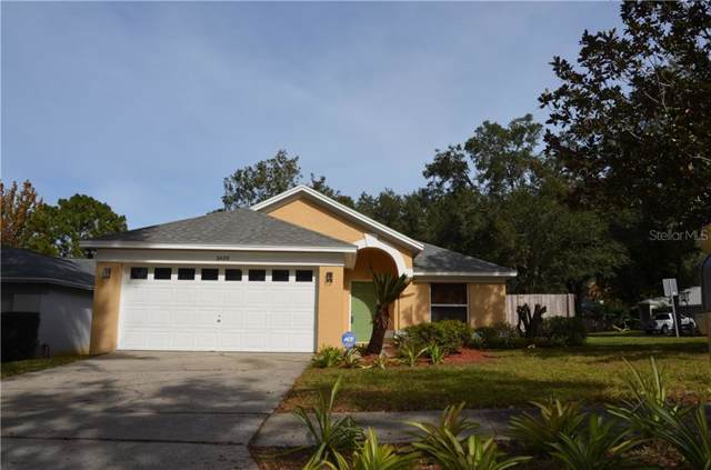Address Not Published, Apopka, FL 32703 (MLS #O5828608) :: Rabell Realty Group