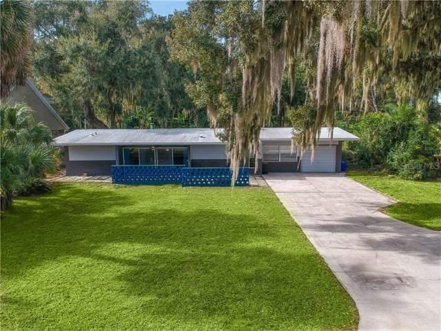 46 Palm Drive, Yalaha, FL 34797 (MLS #O5829083) :: The Duncan Duo Team