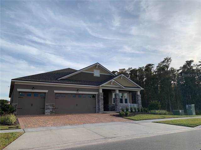 2860 Chantilly Avenue, Kissimmee, FL 34741 (MLS #O5829686) :: The Duncan Duo Team