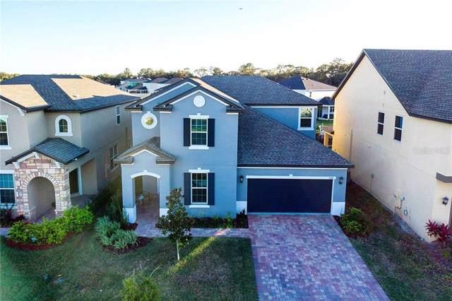 3124 Stonewyck Street, Orlando, FL 32824 (MLS #O5829798) :: Cartwright Realty